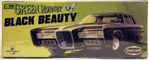 Black Beauty Polar Light Mint in Box Model Kit