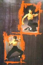 Bruce Lee - 18\\\'\\\' action figure Art Asylum