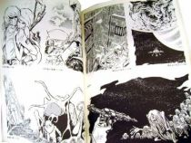 Captain Harlock - Book \'\'Art of \'\' by Reiji Matsumoto