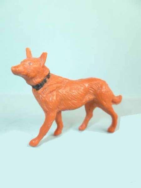 Clairet - the farm - Dog walking