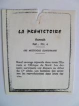 (copie) Starlux - Prehistory Notice - Auroch (réf PH4)