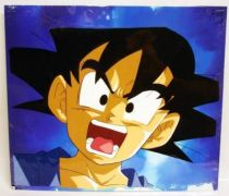 Dragonball GT - Toei Animation Original Celluloid - Goku