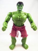 Hulk - Mego World\'s Greatest Super-Heroes - Hulk 30cm (Loose) 01