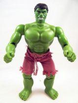 Hulk - Mego World\'s Greatest Super-Heroes - Hulk 30cm (occasion) 01