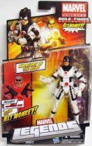 Marvel Legends - Protector - Series Hasbro (Hit Monkey)