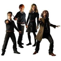 NECA - Order of the Phoenix Series 1 - Set of 4 figures (Harry, Ron, Hermione, Sirius)
