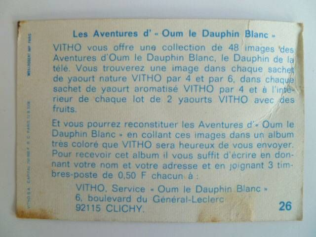 Oum the daulphin Vitho Picture n° 26