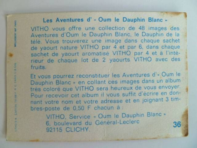 Oum the daulphin Vitho Picture n° 36