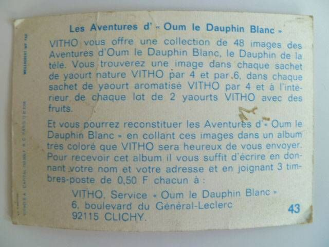 Oum the daulphin Vitho Picture n° 43