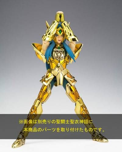 Saint Seiya Myth Cloth Appendix - Aquarius Camus