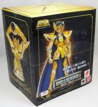 saint_seiya_myth_cloth_ex___camus___chevalier_d_or_du_verseau__2_