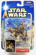 Star Wars (Saga Collection) - Hasbro - Massiff
