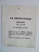 Starlux - Prehistory Notice - Alticamélus (ref PH22)