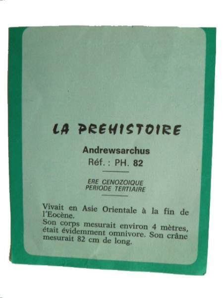 Starlux - Prehistory Notice - Andrewsarchus (réf PH82)