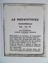 Starlux - Prehistory Notice - Arsinoitherium (ref PH71)