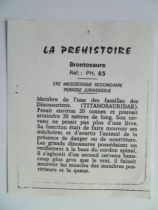 Starlux - Prehistory Notice - Brontosaurus  (réf PH63)