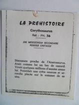 Starlux - Prehistory Notice - Corythosaurus (ref PH36)