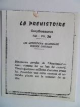 Starlux - Prehistory Notice - Corythosaurus (ref PH36)