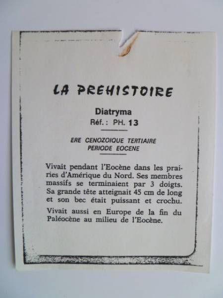 Starlux - Prehistory Notice - Diatryma (ref PH13)