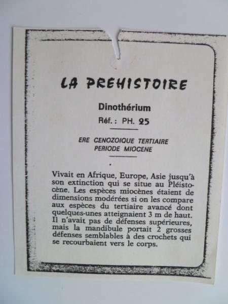 Starlux - Prehistory Notice - Dinotherium (réf PH24)