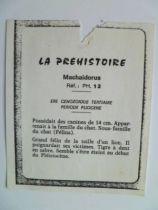 Starlux - Prehistory Notice - Machaidorius (réf PH12)