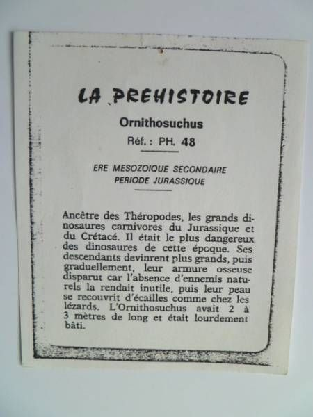 Starlux - Prehistory Notice - Ornithosuchus (ref PH48)
