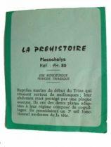 Starlux - Prehistory Notice - Placochelys (ref PH80)