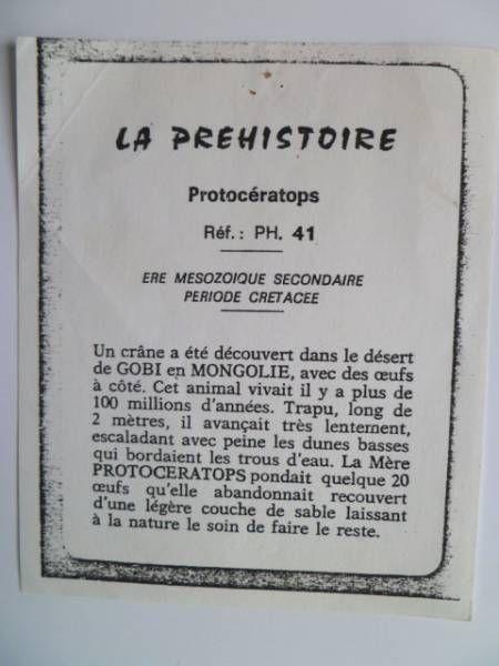 Starlux - Prehistory Notice - Protoceratops (ref PH8)