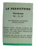 Starlux - Prehistory Notice - Pterodactyle (ref PH31)
