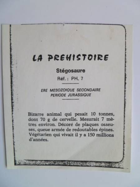 Starlux - Prehistory Notice - Stegosaurus (ref PH7)