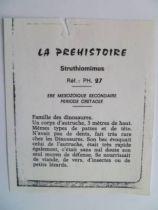 Starlux - Prehistory Notice - Struthiomimrus (ref PH27)