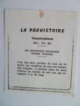 Starlux - Prehistory Notice - Tanystropheus (ref PH35)