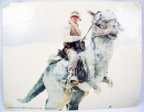 The Empire Strikes Back (1980) - Lobby Card (grande taille) - Luke et son Tauntaun sur Hoth 01