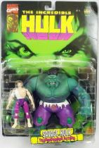 The Incredible Hulk - Savage Hulk & Bruce Banner