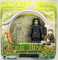 The Lord of the Rings - Minimates - Twilight Frodo & Amon Hen Aragorn