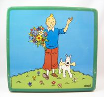 Tintin - Delacre Tin Cookie Box (Square) - Tintin and Snowy in Spring #1