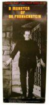 Universal Studios Monsters - Tsukuda Hobby  Frankenstein (A Monster of Dr. Frankenstein) - 1/6e vinyl kit (built and painted)