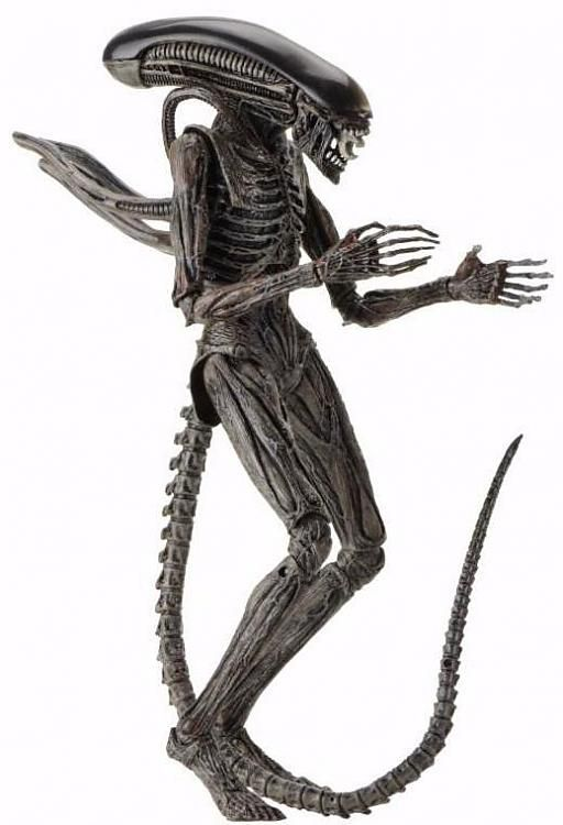 Alien Covenant - NECA - Xenomorph