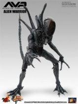 Alien vs. Predator (AVP) - Hot Toys - Alien Warrior 05