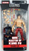 Marvel Legends - Shang-Chi Master of Kung Fu - Series Hasbro (Demogoblin)