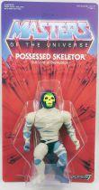 Masters of the Universe - Possessed Skeletor (carte USA) - Super7