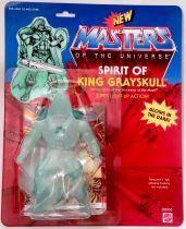 Masters of the Universe - Spirit of King Grayskull (USA card) - Barbarossa Art