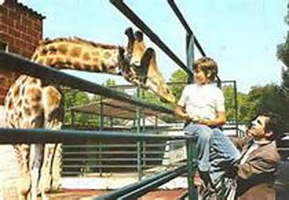 Mini-Visionneuse TV Plastiskop - Zoo de Jean Richard
