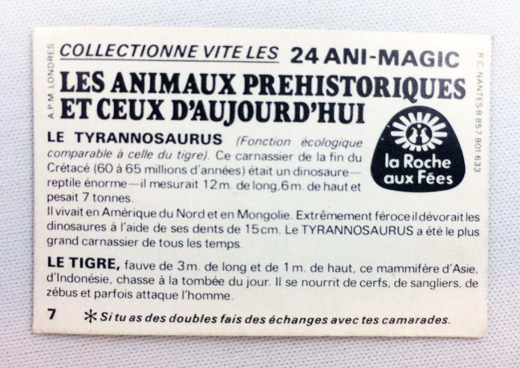 Prehistoric Animals and Presents - Magic picture (Visiomatic) -  La Roche aux Fées n° 07