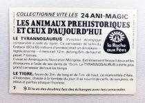 Prehistoric Animals and Presents - Magic picture (Visiomatic) -  La Roche aux Fées n° 07