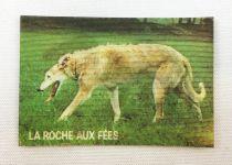 Prehistoric Animals and Presents - Magic picture (Visiomatic) -  La Roche aux Fées n° 18