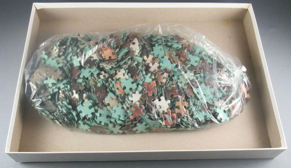 Puzzle1000 pieces - Schmidt Ref 6252656 - Dorothee J Alexandre Filcka MIB