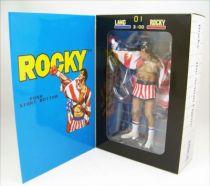 Rocky - Neca - 8-bit Rocky (Classic Video Games Appearance) 03