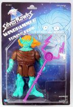 Silverhawks - Kenner - Windhammer & Tuning Fork (Blue card)