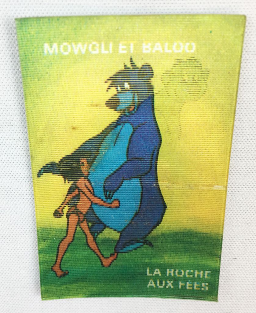The Jungle Book - Magic picture (Visiomatic) -  La Roche aux Fées n° 08